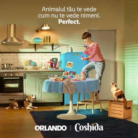 Orlando&Coshida