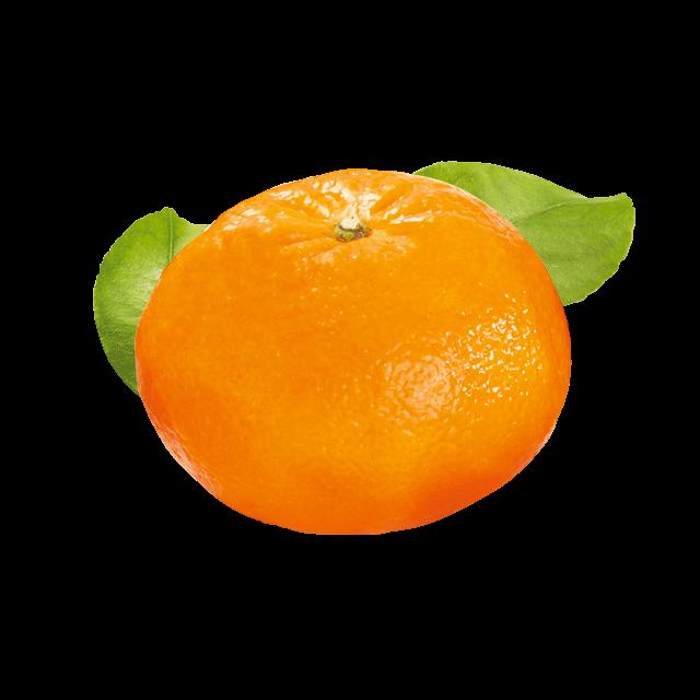 Clementină