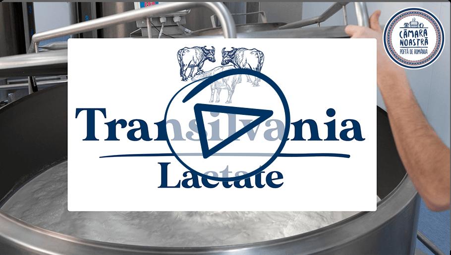 video oastea Transilvania Lactate